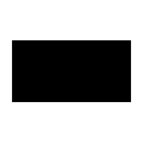 Icon LKW