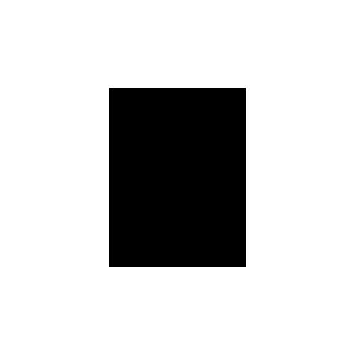 Icon Schloss